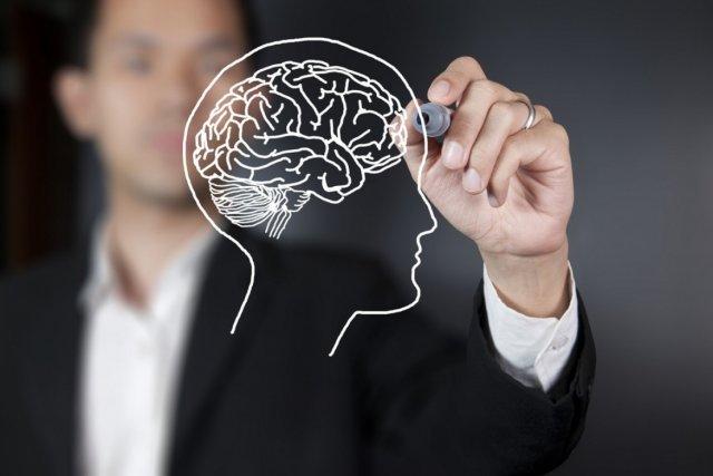 Американские ученые предложили диету, которая поможет сохранить молодость мозга