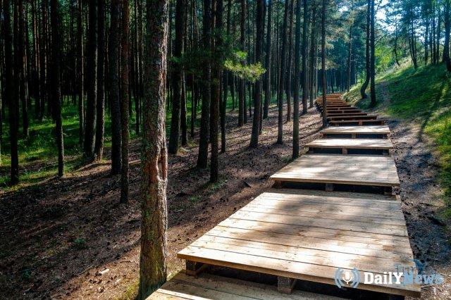 В Калининградской области состоится экологическая акция