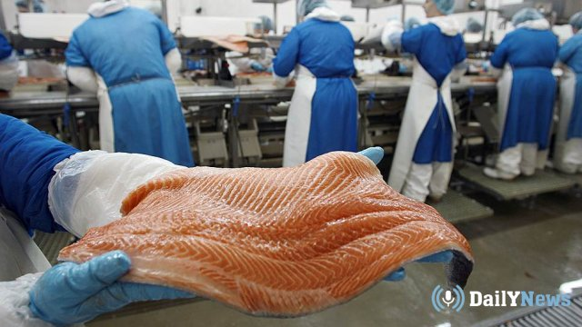 В Сахалинской области появится предприятие по производству лосося