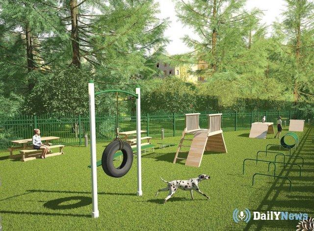 В Ижевске появятся площадки для выгула собак