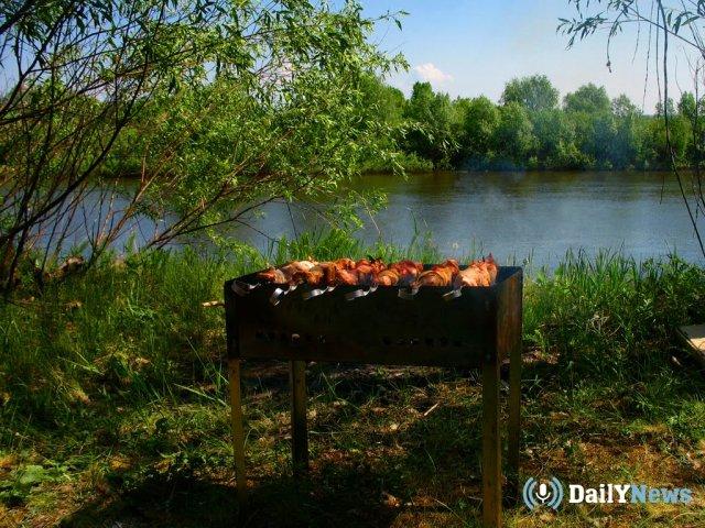 Представители Минздрава дали рекомендации по приготовлению шашлыка