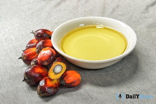 Эксперт рассказал, почему пальмовое масло может быть вредным