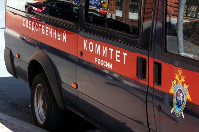 В Следственном Комитете рассказали о причине побега школьницы в Липецке