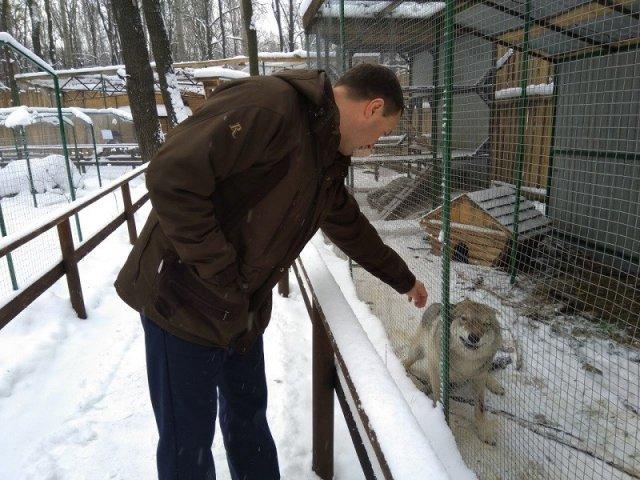 В Ульяновске решится судьба центра реабилитации для животных
