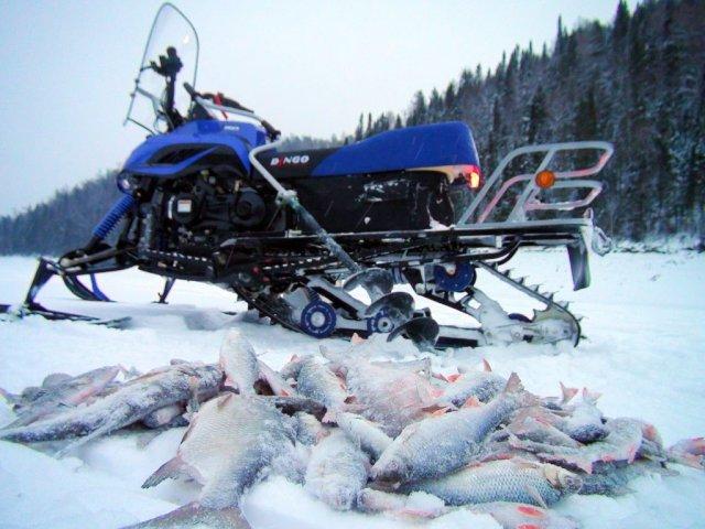 Мужчина из Мурманской области едва не погиб провалившись под лёд