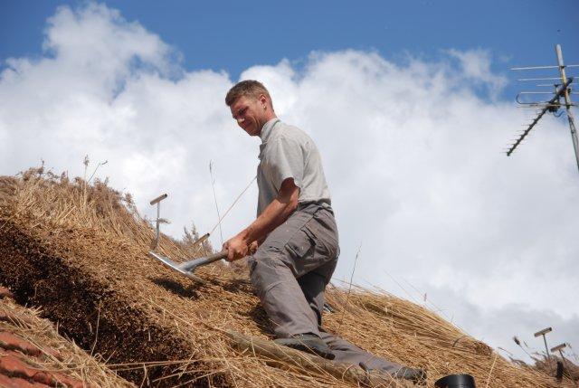 В сельхоз работах в Томской области примут участие безработные
