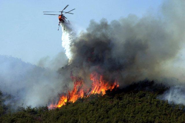 Тушением лесных пожаров будут заниматься представители военной авиации в России