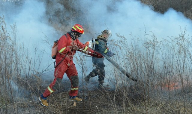 Лесопожарный центр межрегионального уровня появится в Красноярском крае