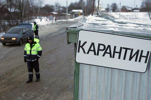 В Татарстане введён карантин по бешенству животных