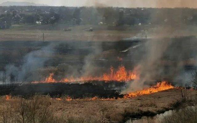 Крупные пожары бушуют в Саратовской области уже неделю