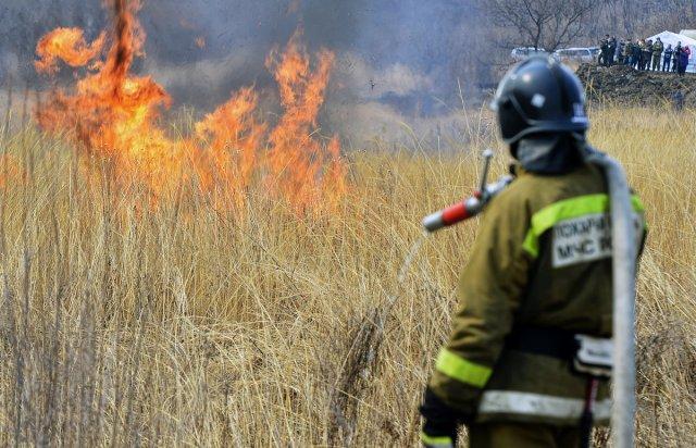 Особый противопожарный режим вступил в действие на территории Тамбовской области