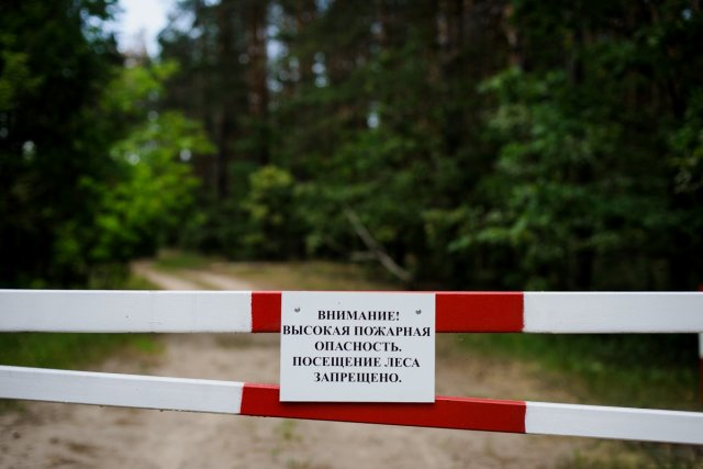 В Липецкой области введены ограничения на посещение лесов